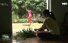 Hoàn cảnh éo le của cô học trò nghèo mất bố, mẹ bị nhiễm HIV