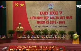 Khai mạc Đại hội Đại biểu toàn quốc Liên minh Hợp tác xã Việt Nam lần thứ V