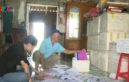 1.000 suất đất tại Ý Yên, Nam Định bán trái thẩm quyền: Mong muốn thu hồi tiền cho NSNN