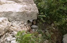 Hà Nội sẽ sửa chữa đê sông Nhuệ vào tuần tới