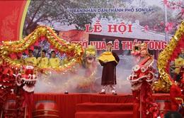 Lễ hội đền thờ Vua Lê Thái Tông
