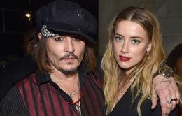 Johnny Depp không muốn trợ cấp cho Amber Heard