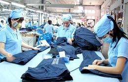 86% công nhân dệt may Việt Nam có nguy cơ mất việc vì tự động hóa