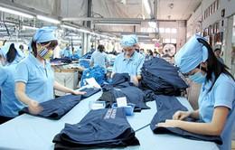Dệt may khó đạt mục tiêu xuất khẩu 30 tỉ USD năm nay