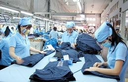 Ngành dệt may Việt với bài toán khó nguyên phụ liệu