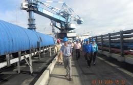 Người dân Trà Vinh giám sát môi trường nhà máy nhiệt điện
