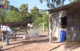 Ninh Thuận tăng cường phòng chống sốt xuất huyết và Zika