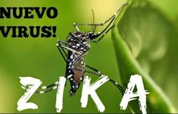 Dịch Zika bùng phát chóng mặt tại Brazil