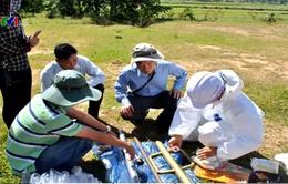 Việt Nam chưa xác định chính xác có bao nhiêu điểm nhiễm chất độc dioxin