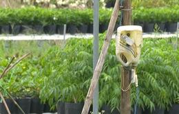Đồng Tháp khuyến cáo cẩn trọng sử dụng điện trong mùa mưa bão