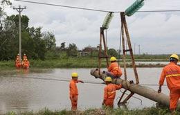 Nhiều địa phương được cấp điện trở lại sau bão