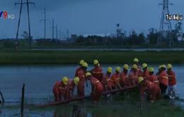 Khắc phục xong toàn bộ sự cố lưới điện trung áp do bão số 1