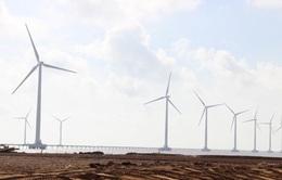 Nhiều tiềm năng phát triển điện gió ở ĐBSCL