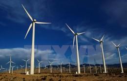 """""""Phát triển năng lượng điện tái tạo là hướng đi đúng"""""""