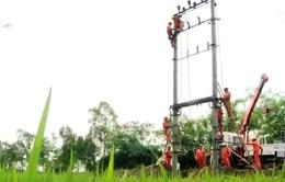 Điện lực miền Bắc chủ động cấp điện mùa nắng nóng