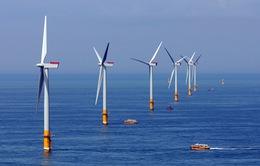 Mỹ mở rộng mô hình sản xuất điện trên… biển