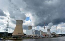 Bài toán điện hạt nhân và những khó khăn
