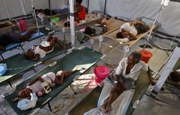 Liên Hợp Quốc thừa nhận là thủ phạm khiến dịch tả bùng nổ tại Haiti năm 2010