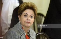 Tổng thống Brazil Dilma Rousseff có nguy cơ bị phế truất