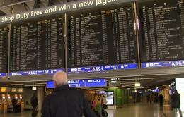 Lufthansa đồng ý tăng lương nhằm chấm dứt đình công