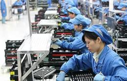 Nhà đầu tư châu Âu tin tưởng đổ vốn vào Việt Nam
