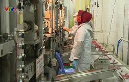 Chỉ hơn 50 doanh nghiệp TP.HCM trích lập Quỹ phát triển khoa học