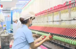 TT-Huế: KCN thu hút lao động gắn bó với doanh nghiệp