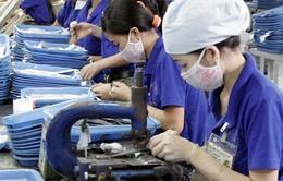 Doanh nghiệp Việt Nam chưa tận dụng hết tiềm năng AEC