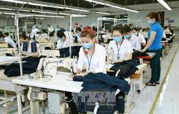 DN EU phản hồi tích cực về môi trường kinh doanh tại Việt Nam