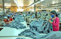 Đơn hàng dệt may năm 2016 dồi dào