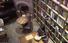 Không gian đọc sách tạo hứng khởi cho độc giả