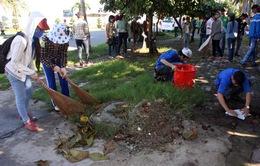 Dọn dẹp môi trường hưởng ứng ngày Thế giới tôn vinh sự tử tế