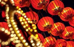 Nhiều hoạt động văn hóa đặc sắc chào đón Tết Bính Thân trên thế giới