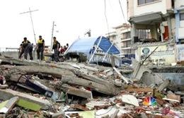 Nguyên nhân và cách ứng phó với động đất