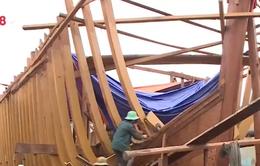 Đà Nẵng thiếu gỗ đóng tàu