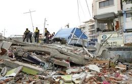 Động đất tại Ecuador: Số người chết tăng lên 235