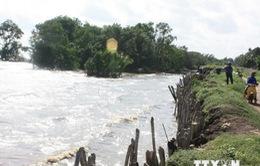 Đồng bằng sông Cửu Long chịu tác động lớn của biến đổi khí hậu