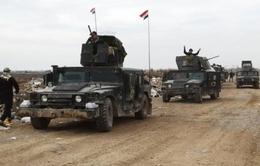 Iraq mở chiến dịch giải phóng Mosul từ IS