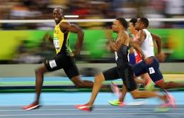 10 bức ảnh thể thao giàu cảm xúc nhất năm 2016