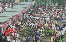 Hoàng thành Thăng Long chật ních người đến dự Lễ hội Hoa anh đào
