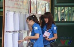 Thanh niên Thủ đô hỗ trợ hết mình cho công tác bầu cử