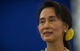 Myanmar: Đảng NLD để ngỏ khả năng soạn thảo hiến pháp mới