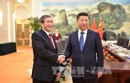 Đồng chí Đinh Thế Huynh hội kiến Tổng Bí thư, Chủ tịch nước Trung Quốc Tập Cận Bình