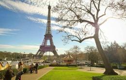 Ngành du lịch Pháp đứng trước nguy cơ thất bát sau vụ khủng bố ở Nice