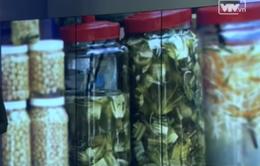 Đà Nẵng phát hiện dưa cải nhiễm chất vàng ô