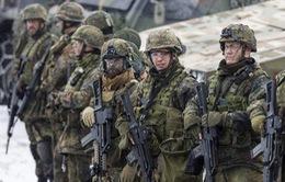 Đức điều tra phiến quân Hồi giáo trà trộn trong quân đội