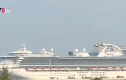 Tàu du lịch chở hơn 2.500 khách cập cảng Chân Mây