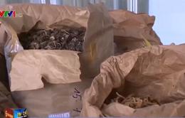 Kiên Giang: Dấu hiệu bất thường trong hồ sơ đưa dược liệu vào bệnh viện