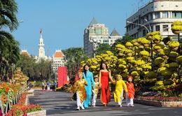 TP Hồ Chí Minh làm đường hoa tết sớm hơn 5 ngày