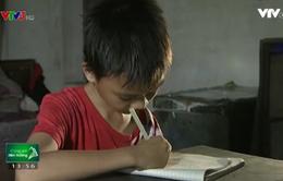 Tương lai nào cho cậu học trò nghèo có bố thần kinh, mẹ bị khuyết tật nặng
